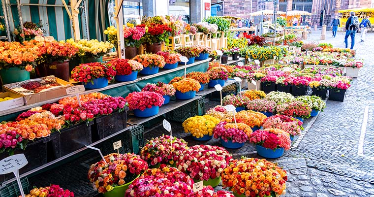 Münstermarkt Freiburg - Blumen